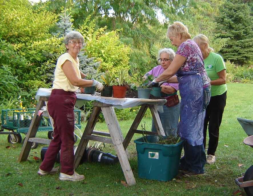 pot-party---guerrilla-gardening-2015-023